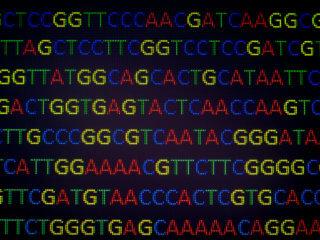 portable genome sequencing