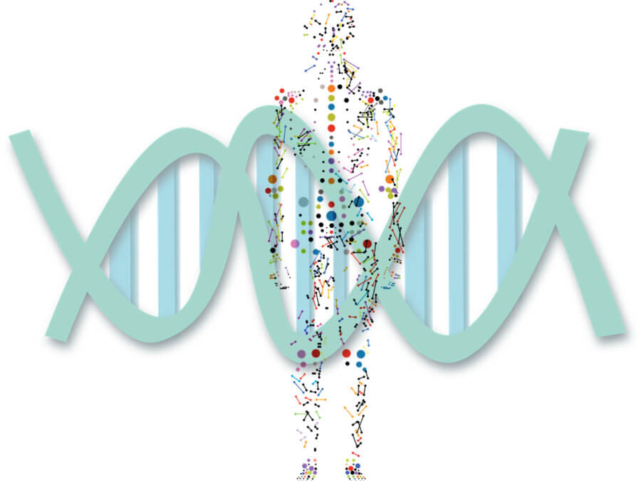 4 Key market segments of genomics in digital health industry
